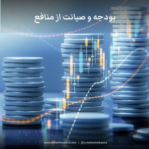 بودجه و صیانت از منافع